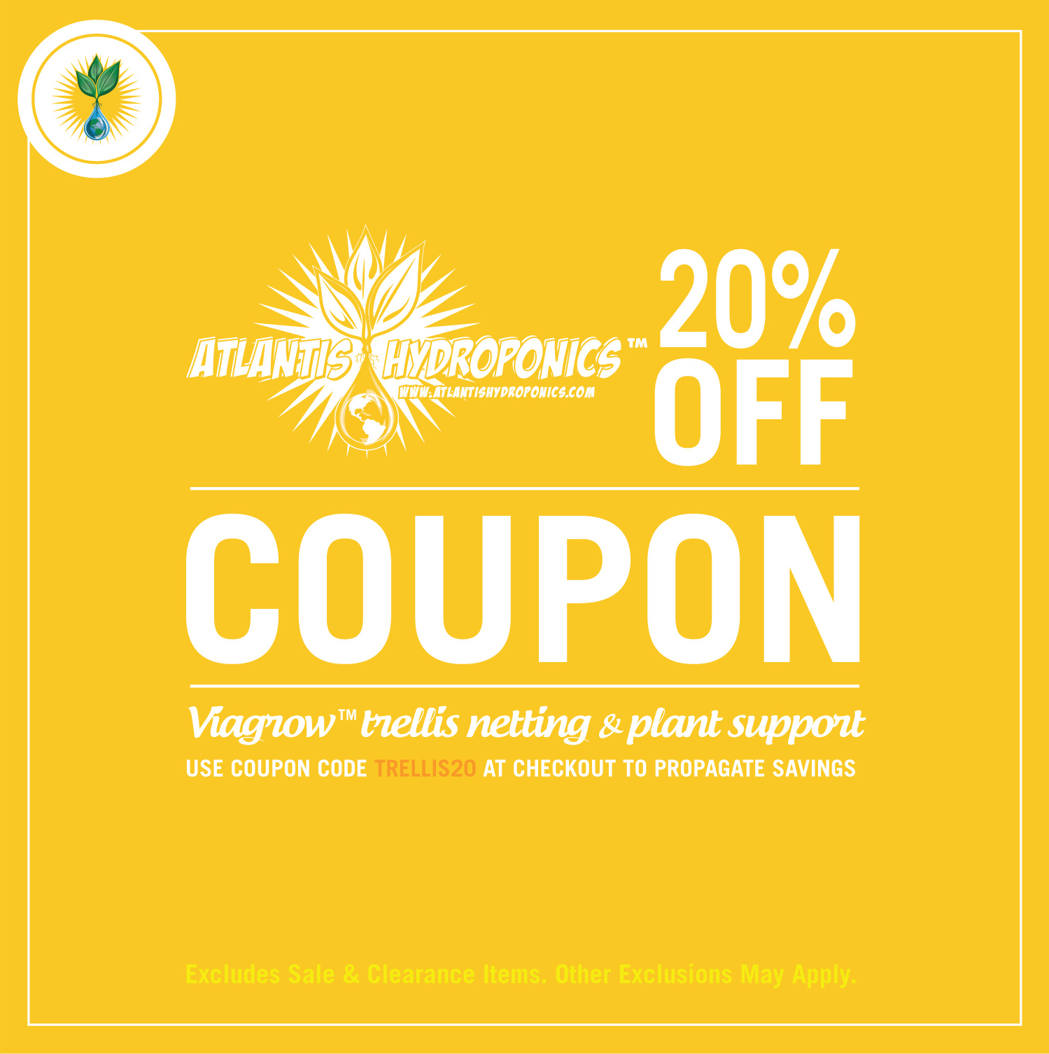 coupon design