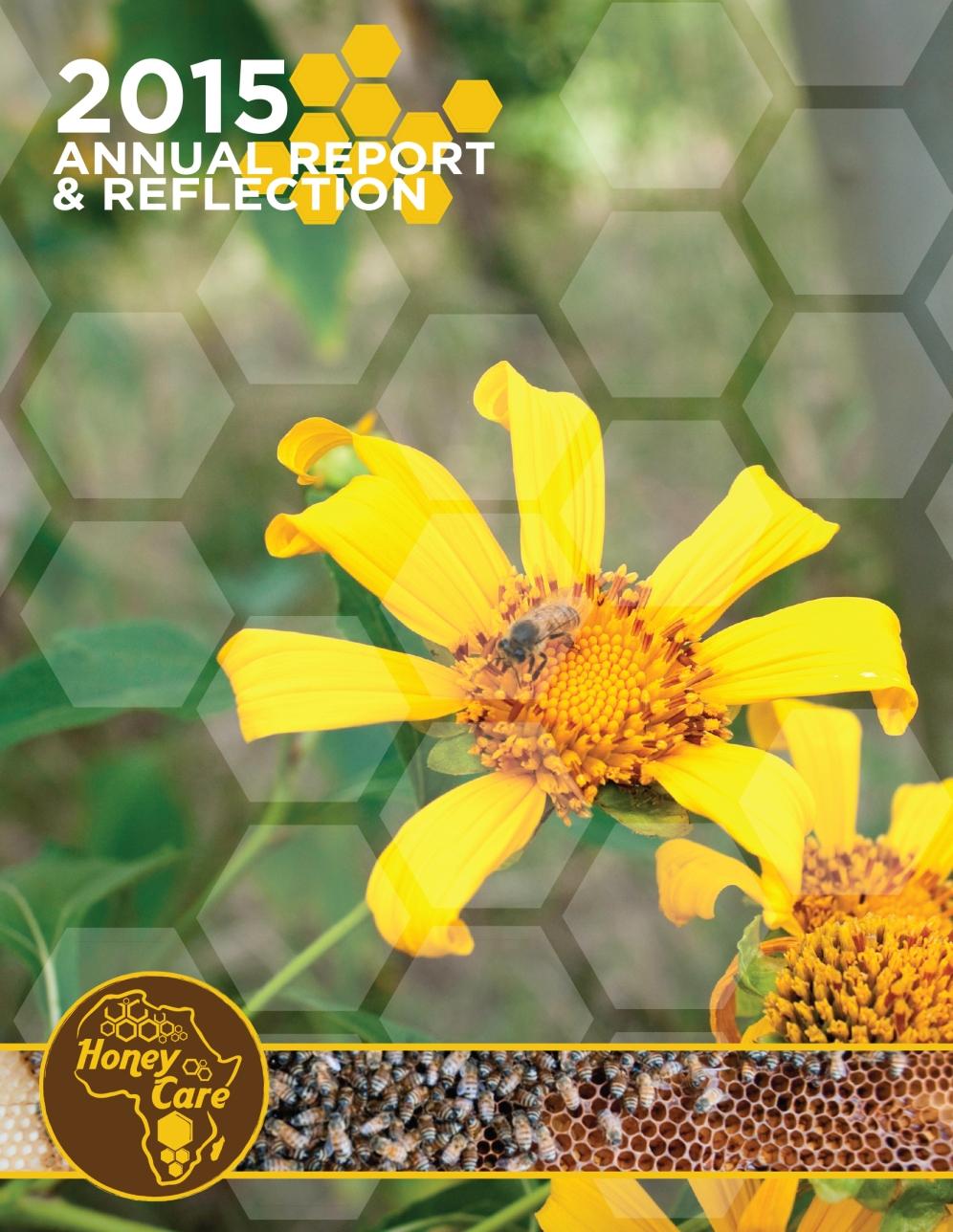 Annual Report Design Honey Care Africa